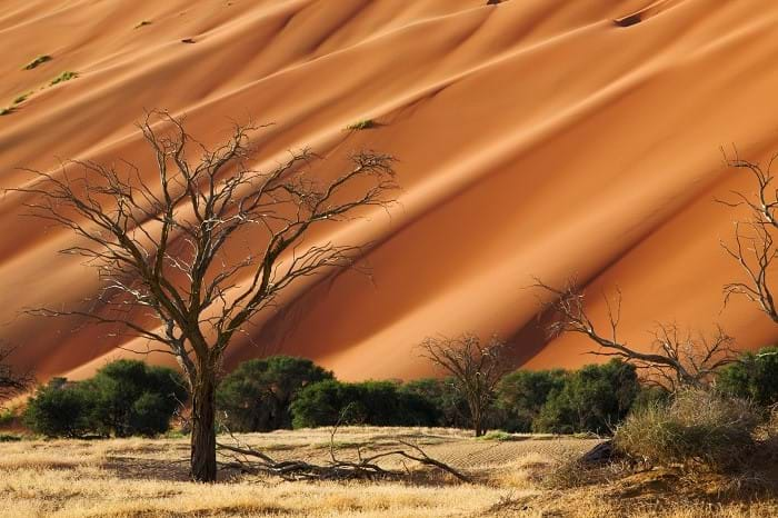 McNally Travel | Visit Namibia