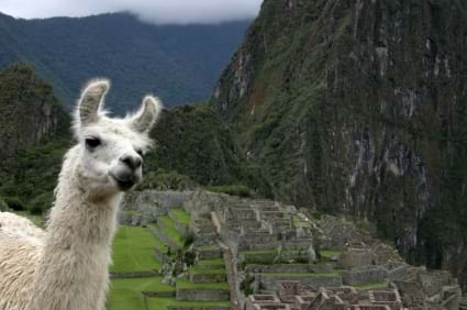 McNally Travel | South America Holidays for Australian Travellers