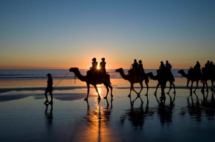 McNally Travel | Australia Holidays | Cable Beach Camels, Broome